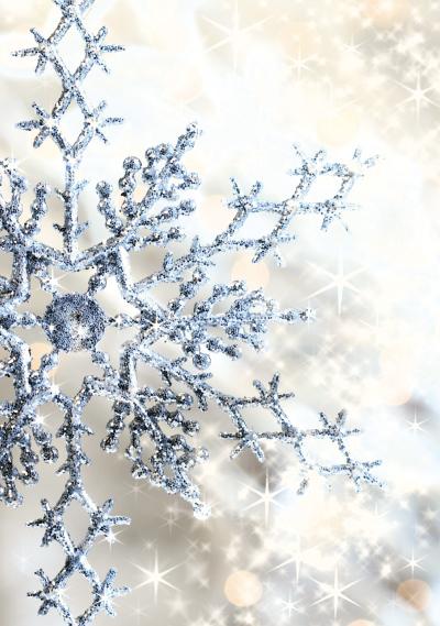 Korusahke-Talvi.jpg