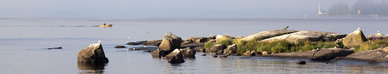 Pedanet Lahti