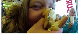 Pihla syö 2.jpg