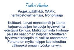 Tuulevi_Aschan_Esittely.PNG