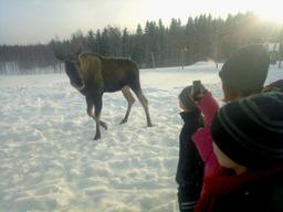 Elk's house meeting elks__7-min.jpg
