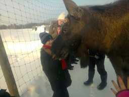Elk's house meeting elks__2-min.jpg