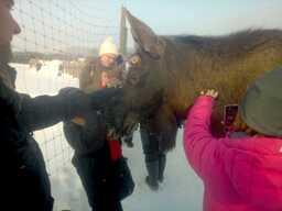 Elk's house meeting elks-min.jpg