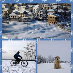 snowcollage.jpg