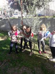 Erasmus tree at Easter.jpg