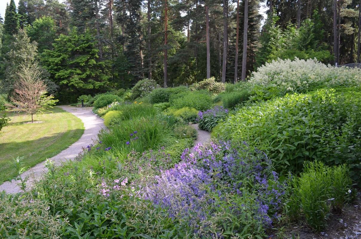 Yltöisten puistoa ja perennanäytemaata Piikkiö 26.6.2013 SJ1 (4).jpg