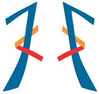 kk.logo.l200px.k180px.png