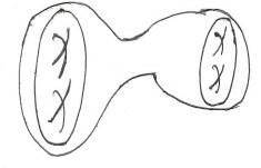 telop 1.jpg