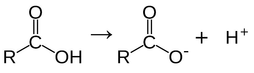 Karboksyyli