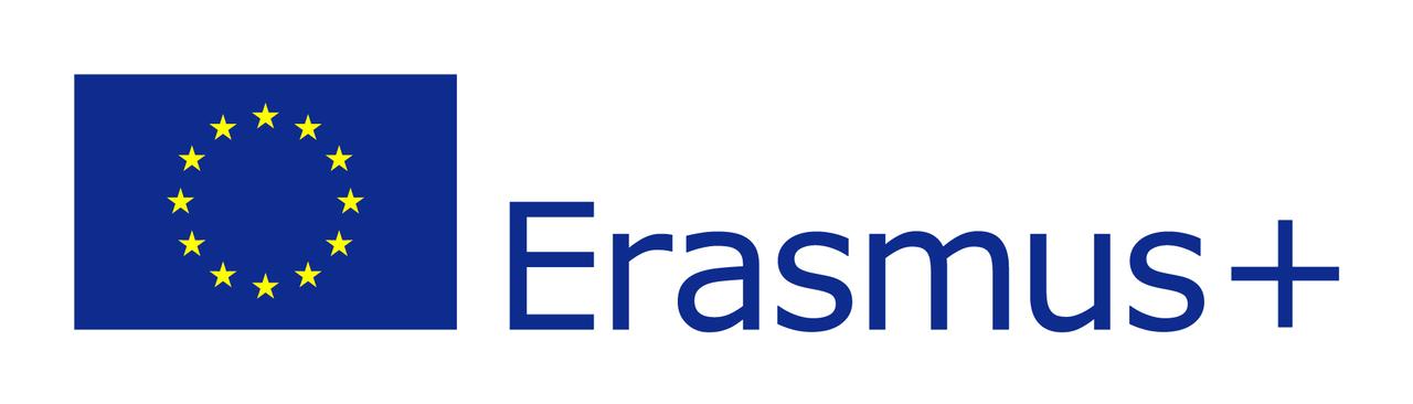 Erasmus flag.jpg