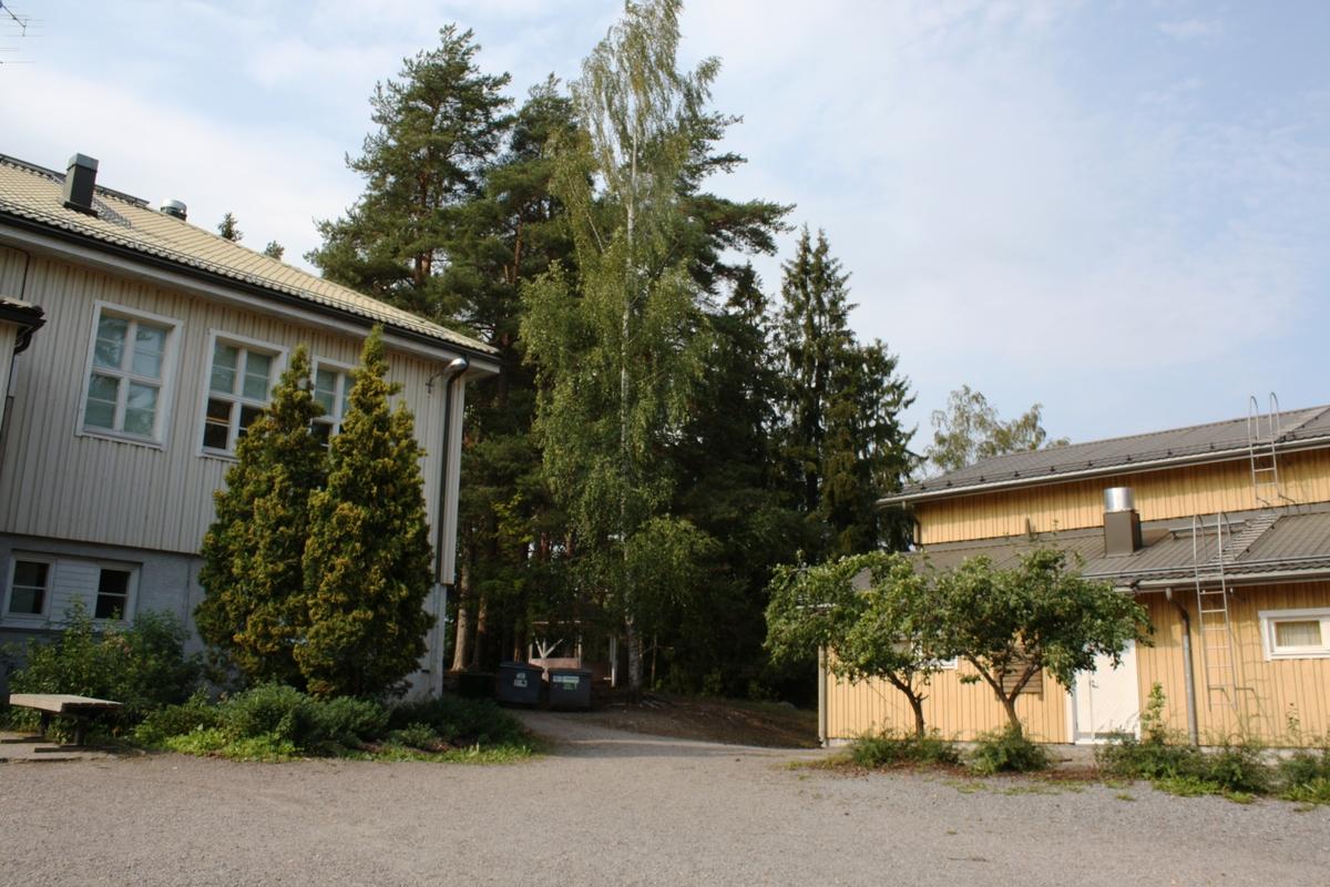 Mäntynummen Koulu