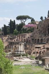 Rooma Foro Romano 23.JPG