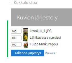 10_galleria.JPG