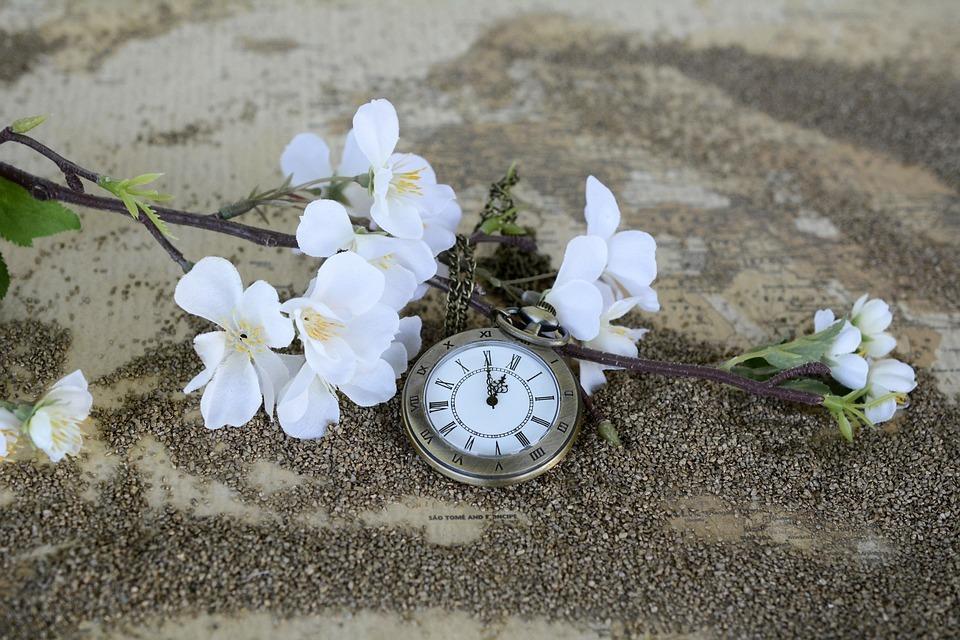 pocket-watch-1637392_960_720.jpg