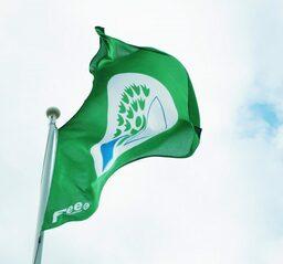 flagga.jpg