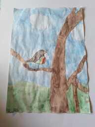 Riinan lintu.jpeg