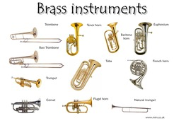 Homemade+Instrument-image-4.png