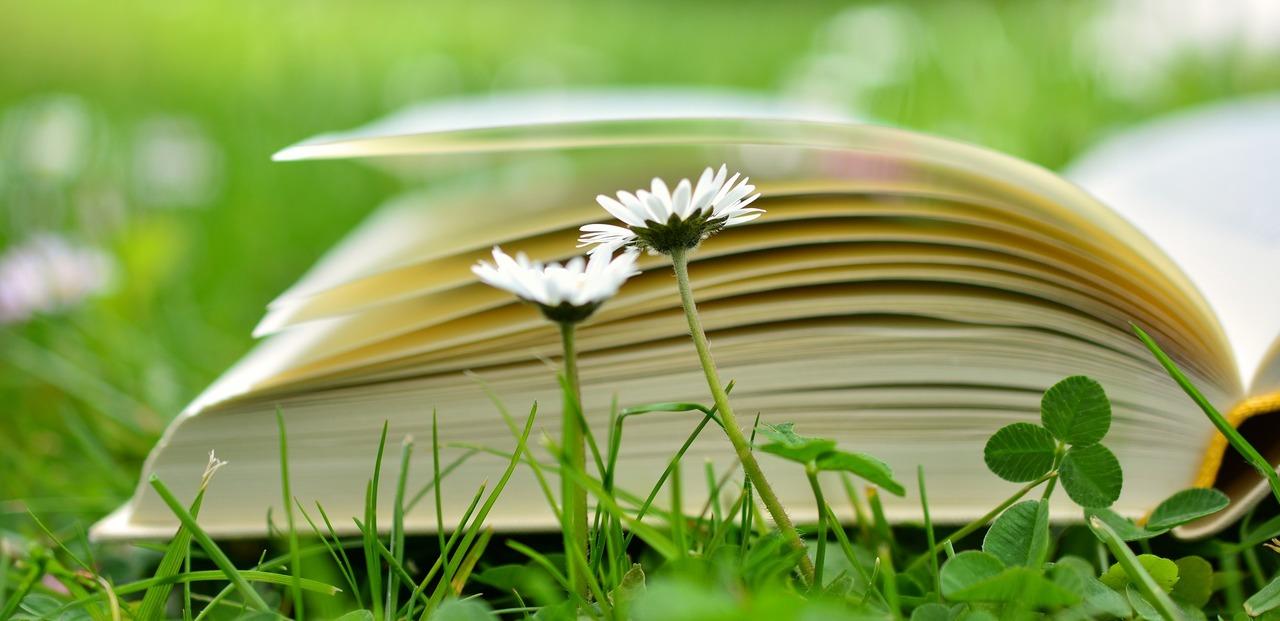 book-2304389_1920.jpg