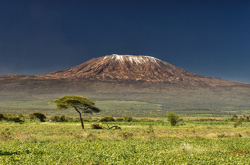 kilimanjaro_shutterstock_8660845.jpg