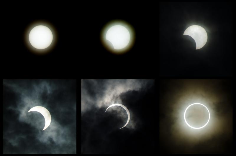 auringon_pimennys-ST.jpg