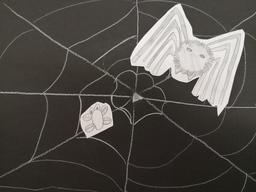 Hämähäkki.jpg